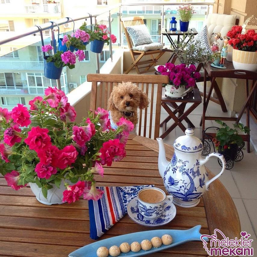 Balkon dekorasyonunda farklı saksı modelleri ile bahçe havasını balkonunuza davet edebilirsiniz.