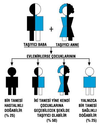 akraba-evliliği.jpg