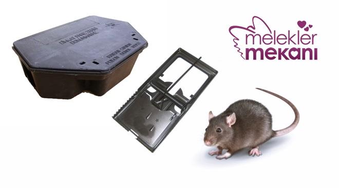 fare nasıl yakalanır.jpg
