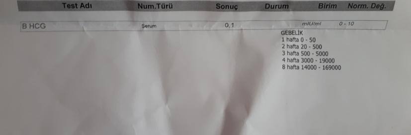 gebelik testi sonucuna göre hamilemiyim.jpg