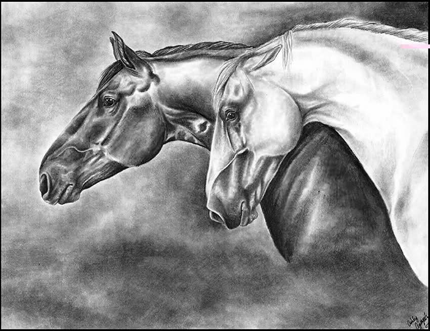 Karakalem At çizimleri Melekler Mekanı