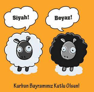 kurban bayrami (10).jpg