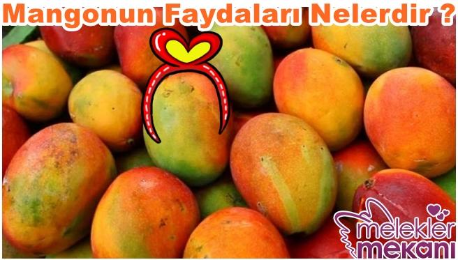 mangonun faydaları nelerdir.jpg