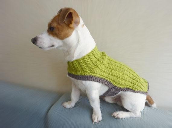 orgu-kopek-kiyafetleri-jpg.85544 el örgüsü köpek kıyafetleri Melekler Mekanı Forum