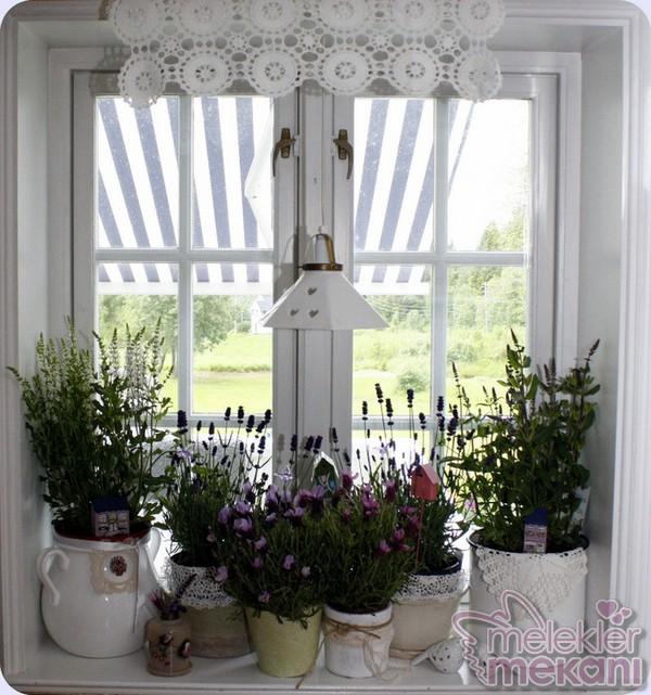 pencere önü çiçek dekorasyonu.jpg
