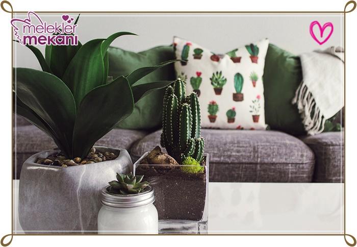 yeni-ev-dekorasyonunda-bitkiler-jpg.86521 Dekorasyon trendleri en yeni dekorasyon trendleri Melekler Mekanı Forum